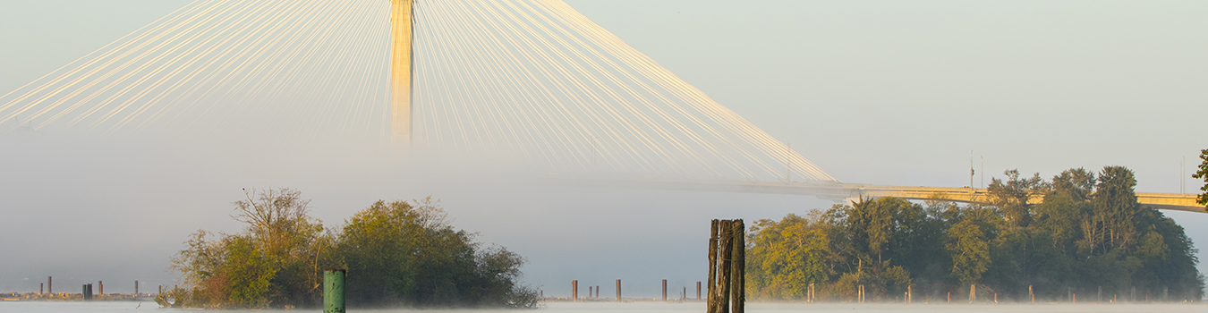 port-kells-bc-port-mann-bridge
